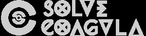 solve coagula сопровождение проектов